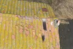 Danni al tetto